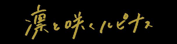 凛と咲くルピナス